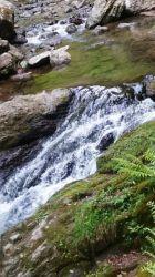 涼やかな川の流れ